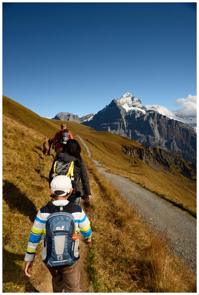 Grindelwald First 2014
